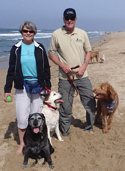 Dog Training and Puppy Training in Orange County CA