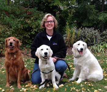 In-home Dog Training and Puppy Training in McHenry County, Lake County and Cook County, Illinois